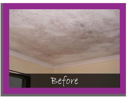Enchanting 50 Bathroom Ceiling Mold Removal Design Ideas How